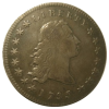 Flowing Hair Dollar 1794-1795